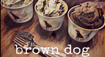 brown dog ice cream