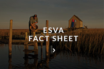 eastern virginia fact sheet