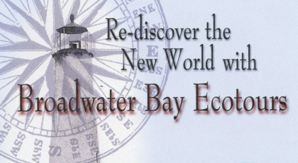 broadwater bay ecotours