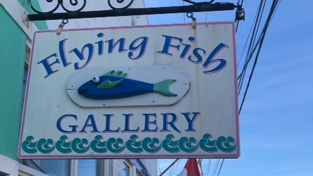 flying fish gallery
