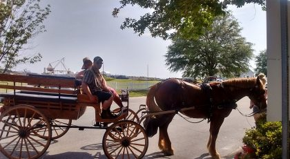 marshalls anchor down ranch carriage rides