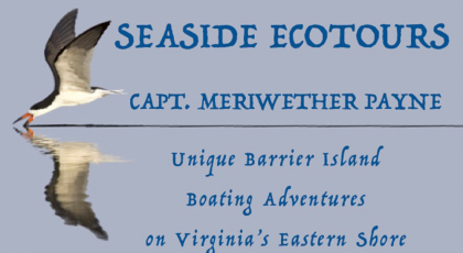 seaside ecotours